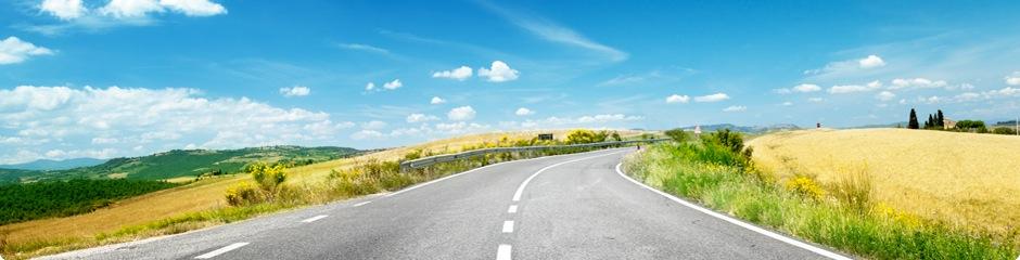 Road by grassland.